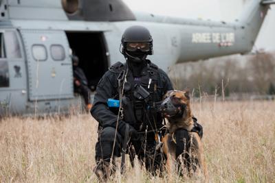 FIPN-SDLP Diesel, chienne d'assaut du Raid tuée à Saint